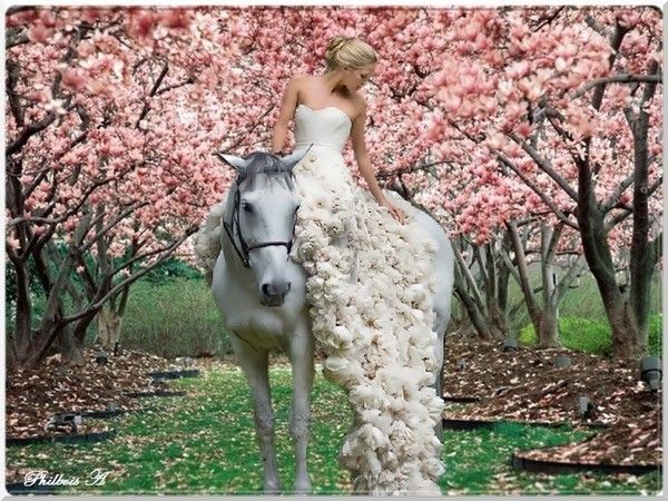 La belle et son cheval blanc
